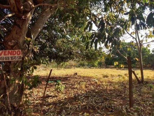 Chácara à venda, 4000 m² por r$ 230.000 - san diego - goianira/go - Foto 10