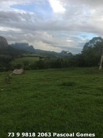 Fazenda a venda Bahia 30 hectares - Foto 7
