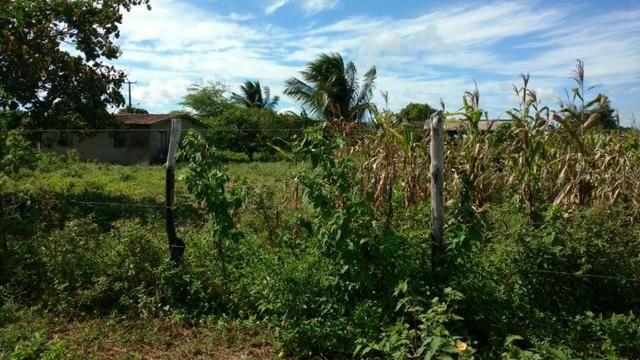 Granja 7 hectares, Casa simples,próximo a RN 064, Cercada - Foto 4