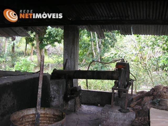 Fazenda com 52,5 Hectares com Fábrica de Azeite de Dendê à Venda na Ilha de Boipeba 402074 - Foto 16