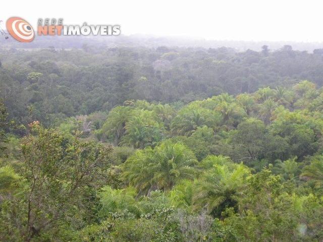 Fazenda com 52,5 Hectares com Fábrica de Azeite de Dendê à Venda na Ilha de Boipeba 402074 - Foto 2