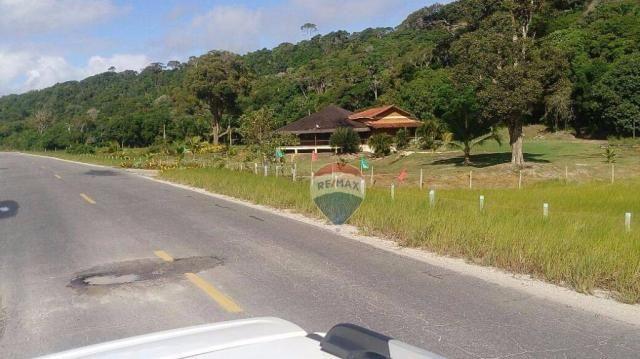 Terreno residencial à venda, praia de mogiquiçaba, belmonte. - Foto 4