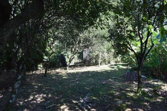 Linda casa no petrópolis | com terreno de 2.517 m² | área de lazer completa - Foto 12