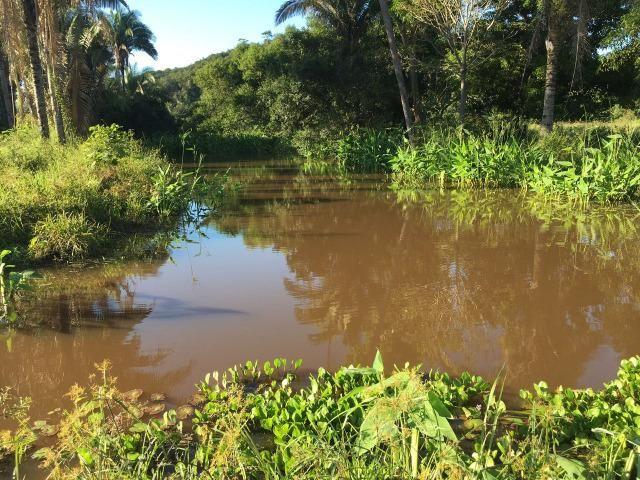 Fazenda com 980 hectares no município de Palmeirais-PI, 95 km de Teresina - Foto 14