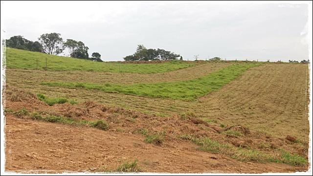 Vendo meu terreno em Ibiúna - Foto 3