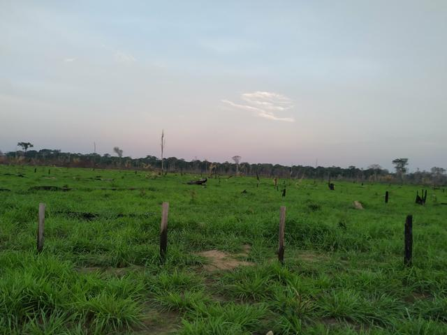 VENDE -SE Terra na Samuel candeias do jamari - Foto 5