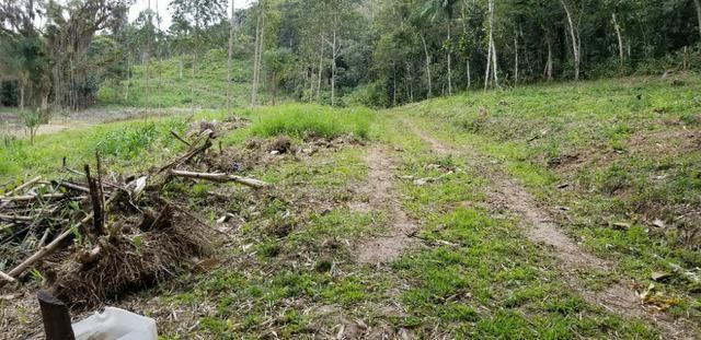 Terreno - Sitio - Chácara - Foto 8