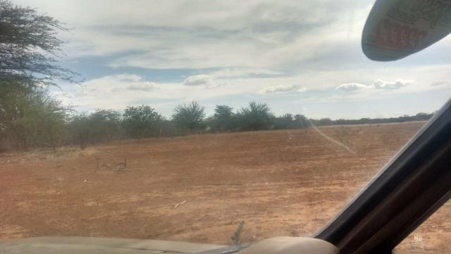 Vendo terreno em Recife de Jussara- Bahia. Contato 11- * - Foto 5