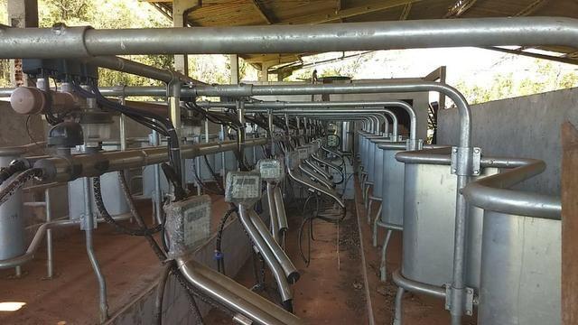 Ordenhadeira de leite - Foto 4