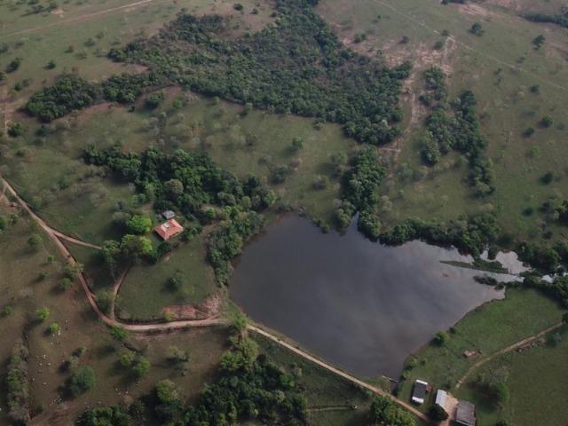 625 Alq. na Cultura | Ipameri-Goiás. Abaixo do Preço! - Foto 7
