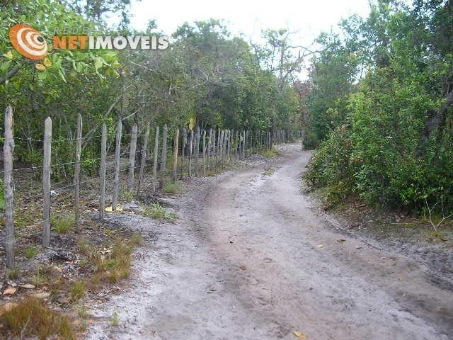 Fazenda com 52,5 Hectares com Fábrica de Azeite de Dendê à Venda na Ilha de Boipeba 402074 - Foto 6