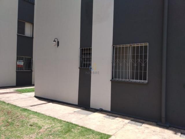 apartamento 2 quartos agua branca - Foto 13