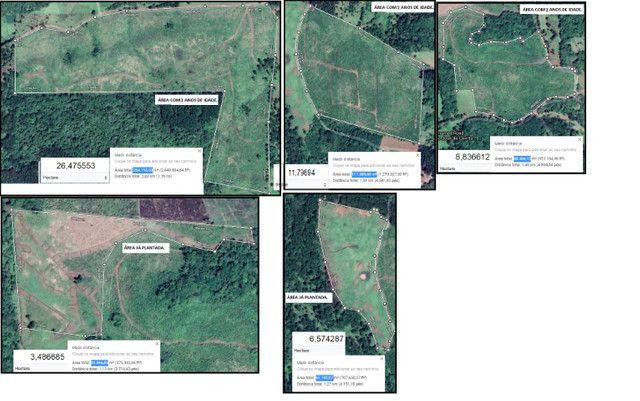 Fazenda com Reflorestamento na Serra Catarinense