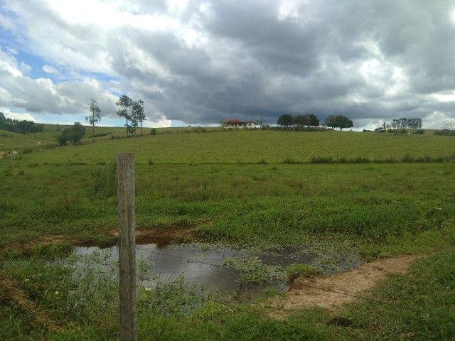 Vende-se sítio de 37 alqueires região de Riversul SP - Foto 2