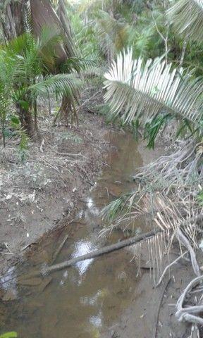 Vende-se um terreno na ilha de Santana valor valor negociar - Foto 3