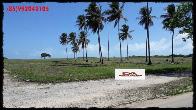Parque Ageu !! - Foto 7