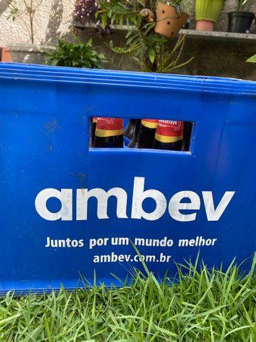 Caixa de cerveja com casco (completa) - Foto 4