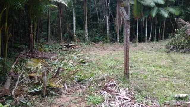 Vendo terreno no gasparinho R$ 42.000,00