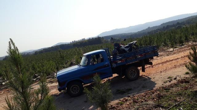 Vendo ford f-1000 - Foto 4