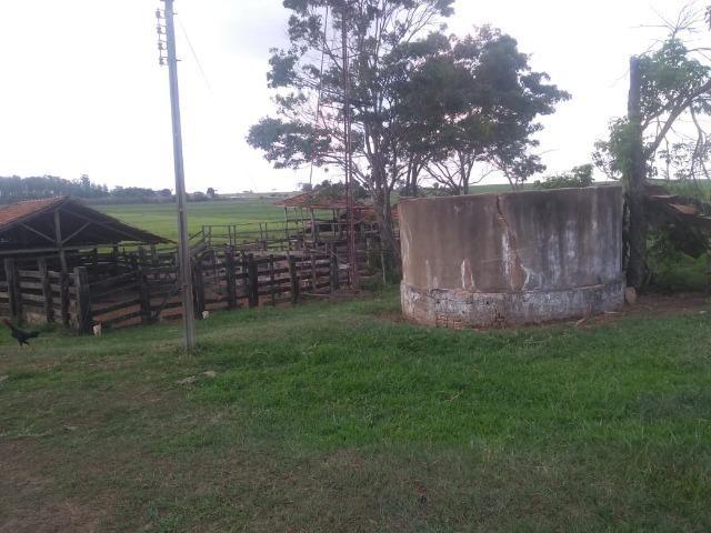 Vendo fazenda 250 alqueires próxima a presidente prudente - Foto 10