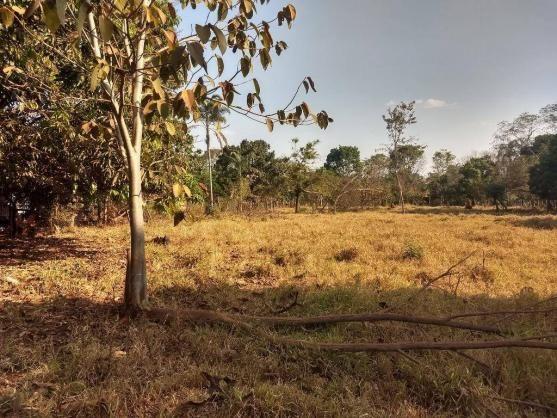 Chácara à venda, 4000 m² por r$ 230.000 - san diego - goianira/go
