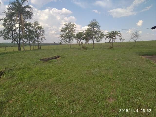 Vendo fazenda 250 alqueires próxima a presidente prudente - Foto 16
