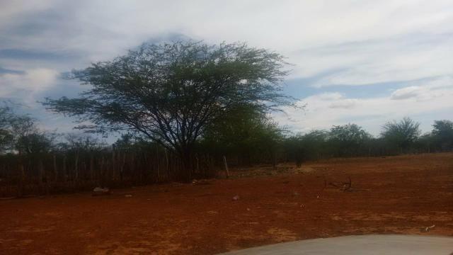 Vendo terreno em Recife de Jussara- Bahia. Contato 11- * - Foto 6