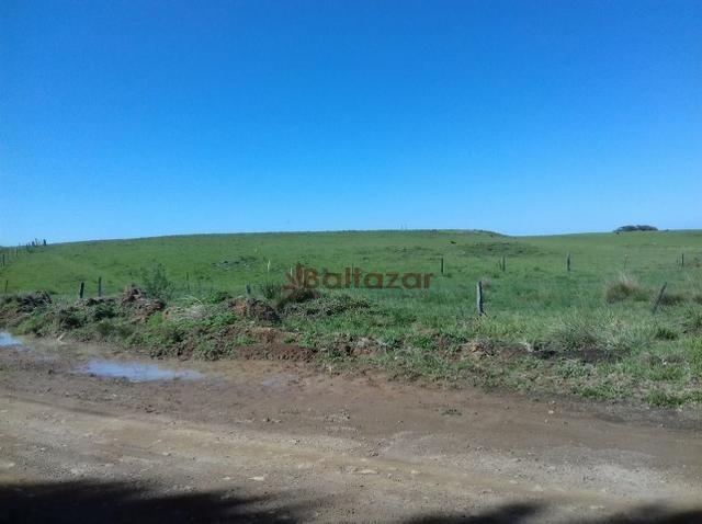 Vendo este excelente e magnífico campo, um verdadeiro paraíso, com a área de 150 hectares - Foto 8