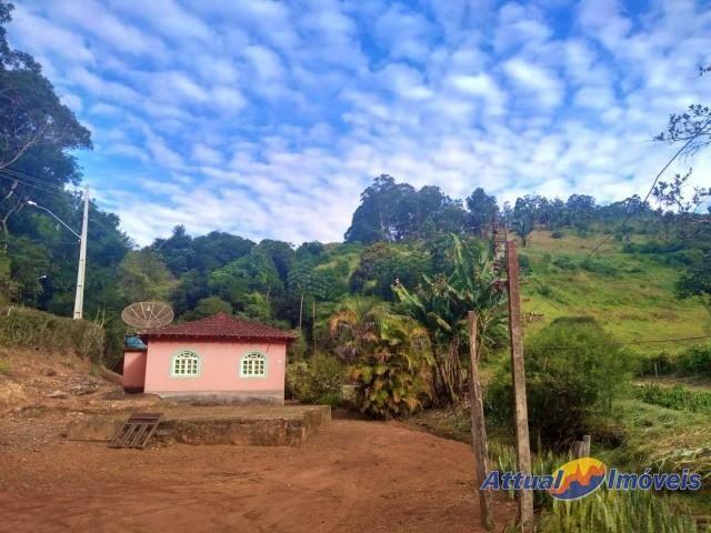 Sítio com excelente área, 3 nascentes, muita água! Próximo ao centro à venda em São José d - Foto 2