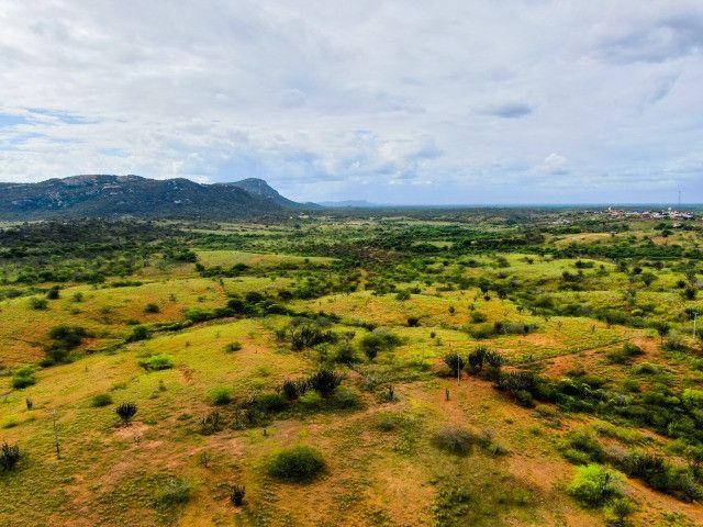 Fazenda à venda, 308 Hectares por R$ 770.000 - Sítio Novo/RN - Foto 8