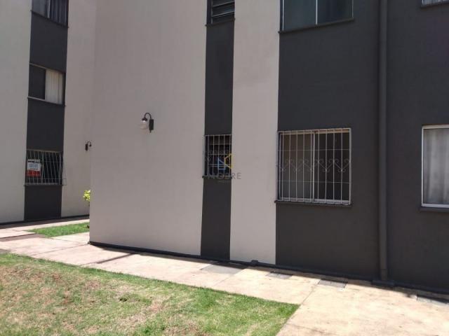 apartamento 2 quartos agua branca - Foto 15
