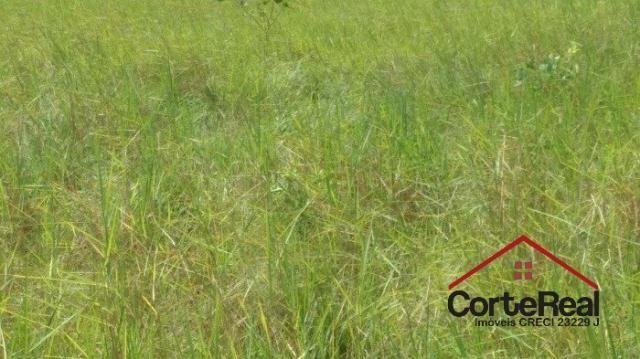 Chácara à venda em Centro, Corumbá cod:8013 - Foto 11
