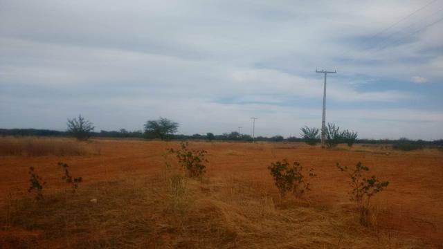 Vendo terreno em Recife de Jussara- Bahia. Contato 11- * - Foto 7