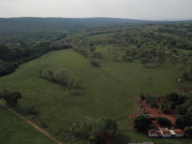 625 Alq. na Cultura | Ipameri-Goiás. Abaixo do Preço! - Foto 4