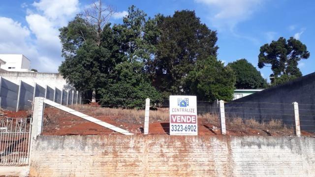 Terreno à venda em Estrela, Ponta grossa cod:1120 - Foto 2