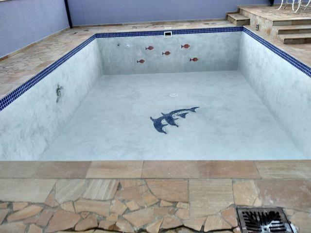 Golfinho mosaico, tartaruga mosaico, fundo de piscina - Foto 3