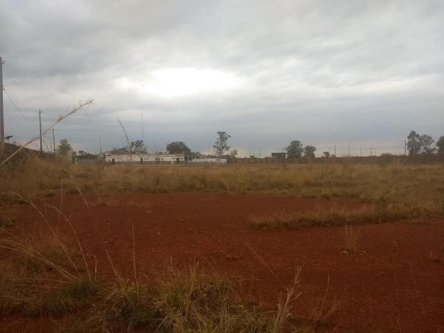 Terreno na BR 040 20.000m² - Foto 2