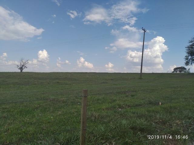 Vendo fazenda 250 alqueires próxima a presidente prudente - Foto 9
