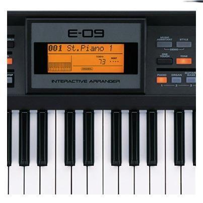 Teclado Roland E-09