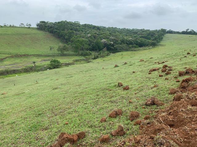 Lotes de terrenos com 5 mil metros - ideal para sua chacara,preço indiscutivel!!! - Foto 2
