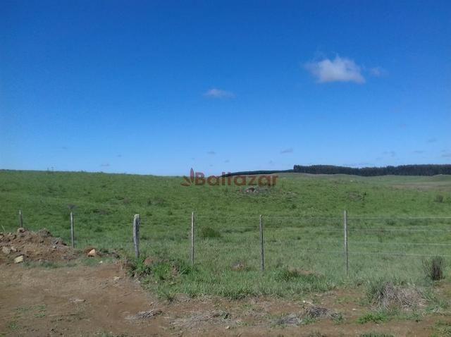 Vendo este excelente e magnífico campo, um verdadeiro paraíso, com a área de 150 hectares - Foto 3