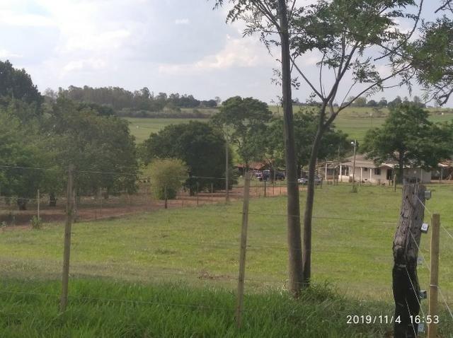 Vendo fazenda 250 alqueires próxima a presidente prudente - Foto 7