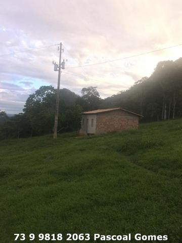 Fazenda a venda Bahia 30 hectares - Foto 5