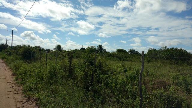 Granja 7 hectares, Casa simples,próximo a RN 064, Cercada - Foto 6