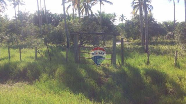 Terreno residencial à venda, praia de mogiquiçaba, belmonte. - Foto 15
