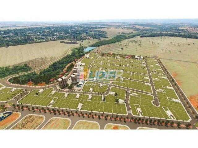 Terreno à venda com 0 dormitórios em Loteamento portal do vale ii, Uberlândia cod:24096 - Foto 14