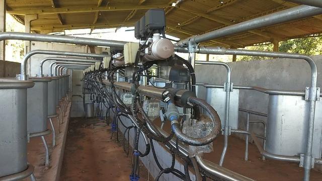 Ordenhadeira de leite - Foto 2