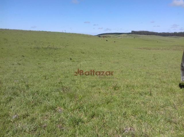Vendo este excelente e magnífico campo, um verdadeiro paraíso, com a área de 150 hectares - Foto 11