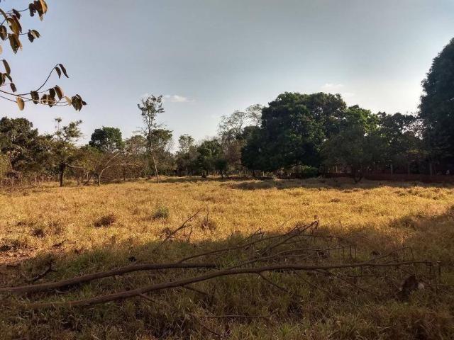 Chácara à venda, 4000 m² por r$ 230.000 - san diego - goianira/go - Foto 2