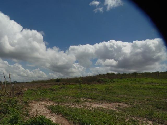 Terreno Gravata 1.100m2 - Foto 7